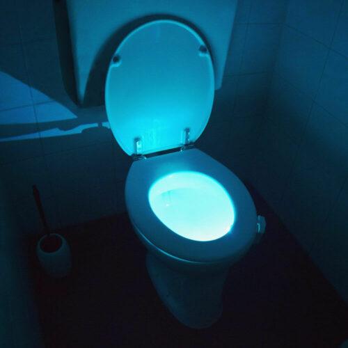 Toilet LED Light