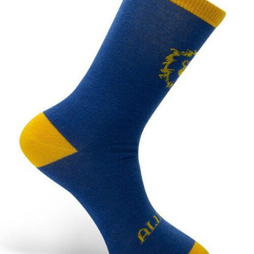 Socks World of Warcraft – Alliance, Blue/Yellow One Size