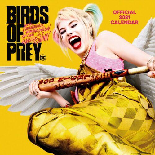 2021 Calendar – Birds of Prey, 30x30cm