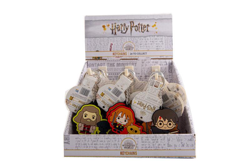 Harry Potter 2D Keychain Asr. (Random)